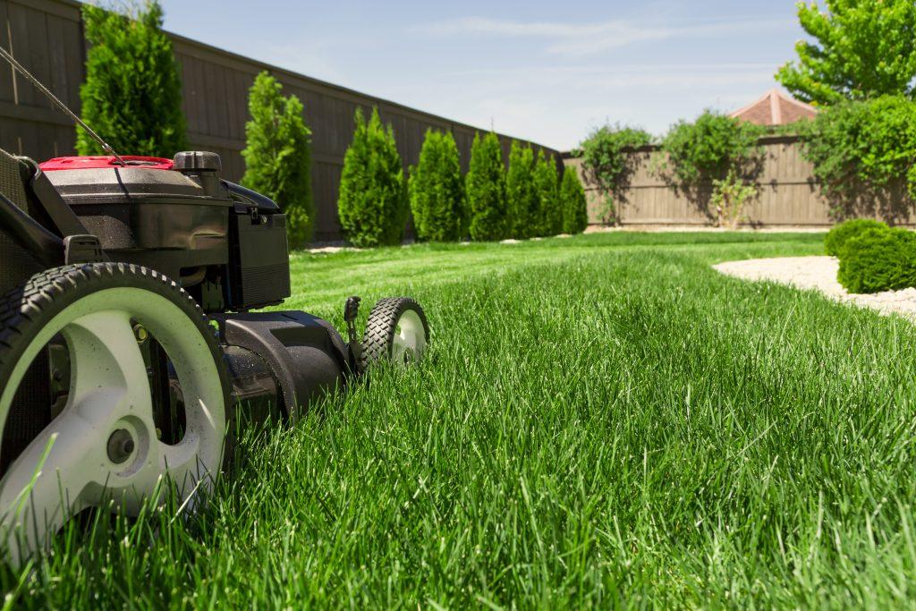 Marks DIY Lawn mowing christchurch